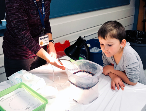 Sparking an interest in Science